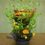 今週は、ハロウィンです。(花)ガーベラ、ケイトウ、サンダーソニア(枝)ドラゴン柳(実)ヒペリカム(葉物)パニカム