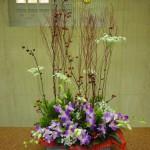 (花)デンファレ、ホワイトレースフラワー(実)サンキライ(葉物)ゴールドクレスト、丸葉ルスカス