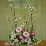 春爛漫です。(枝)啓翁桜、(花)トルコききょう、ガーベラ、アストランティア、(葉物)ナルコラン