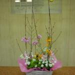 春爛漫です。(枝)サンシュ(花)エビデンドラム、オーニソガラム、ホワイトレースフラワー(葉物)てまり草