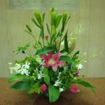 (花)粟、ゆり、デンファレ、クレマチス、スプレーカーネーション(葉物)ヒバ、ドラセナ