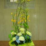 (花)カンガルーポー、トルコききょう、サンダーソニア、あじさい(葉物)丸葉ルスカス、利休草