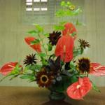 (花)アンスリューム、ひまわり(葉物)木苺、ゴットセファナ、モンステラ、コンパクター