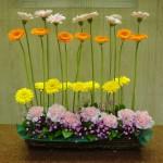 ひとあし先に、春が来ました。[花]ガーベラ(ファニー)(ファンタ)(バナナ)、カーネーション(エクセリア)、かすみ草(ピンク染)、[葉]丸葉ルスカス
