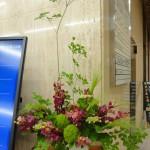 [花]モカラ(ロビン)、あじさい、てまり草、キリフキ草、[枝]どうだんつつじ