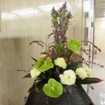 [花]りんどう(夢うらら)、トルコききょう(コサージュイエロー)アンスリューム(グリーン)、[葉]シンフォリカルポス原種、ドラセナ、コンパクター  平成28年10月第5週分