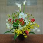 [花]胡蝶蘭(白)、オンシジューム(ハニーエンジェル)、グロリオーサ(サザンウィンドゥ)、スイートピー(ステラ)、[葉]ドラセラ             (2月第3週分です。)